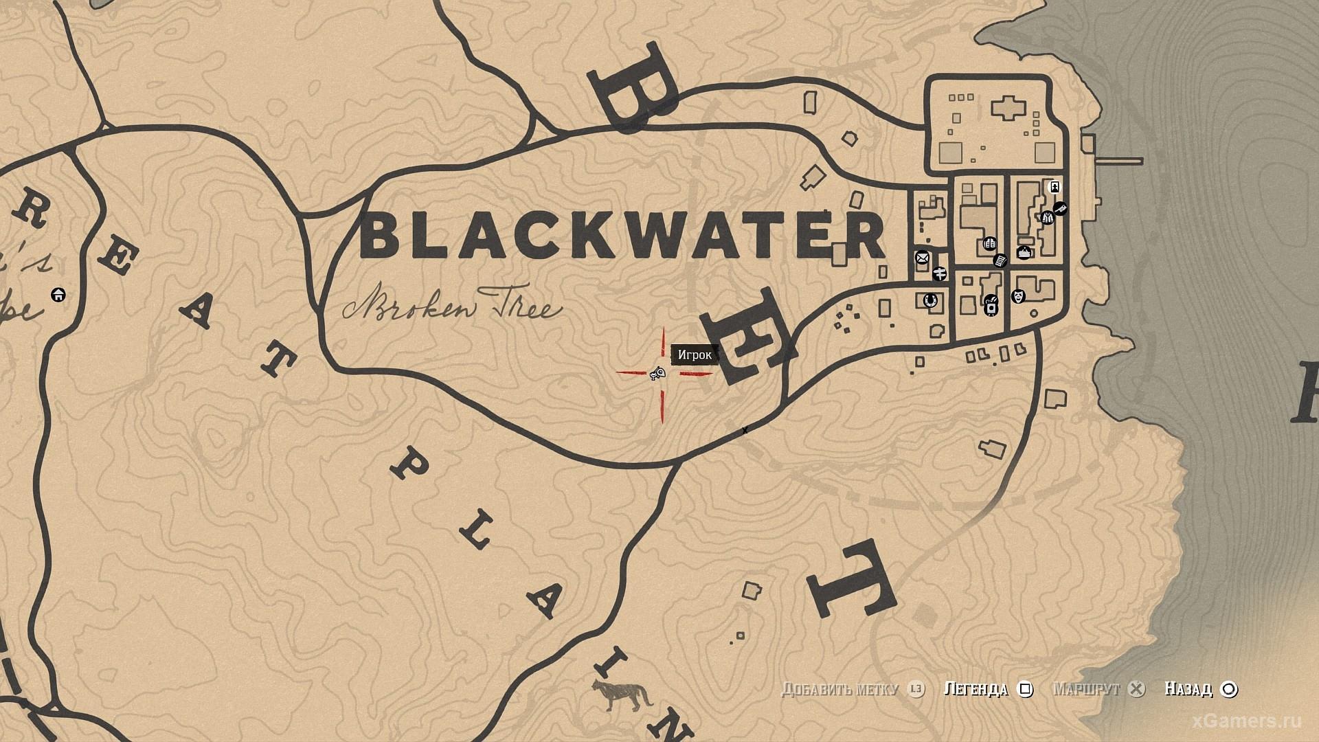 Location where grows Desert Poppy