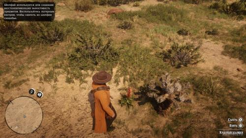 Red Dead Redemption 2 - Plants Guide