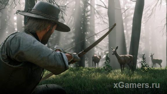 RDR2: Bow and Arrows | Types