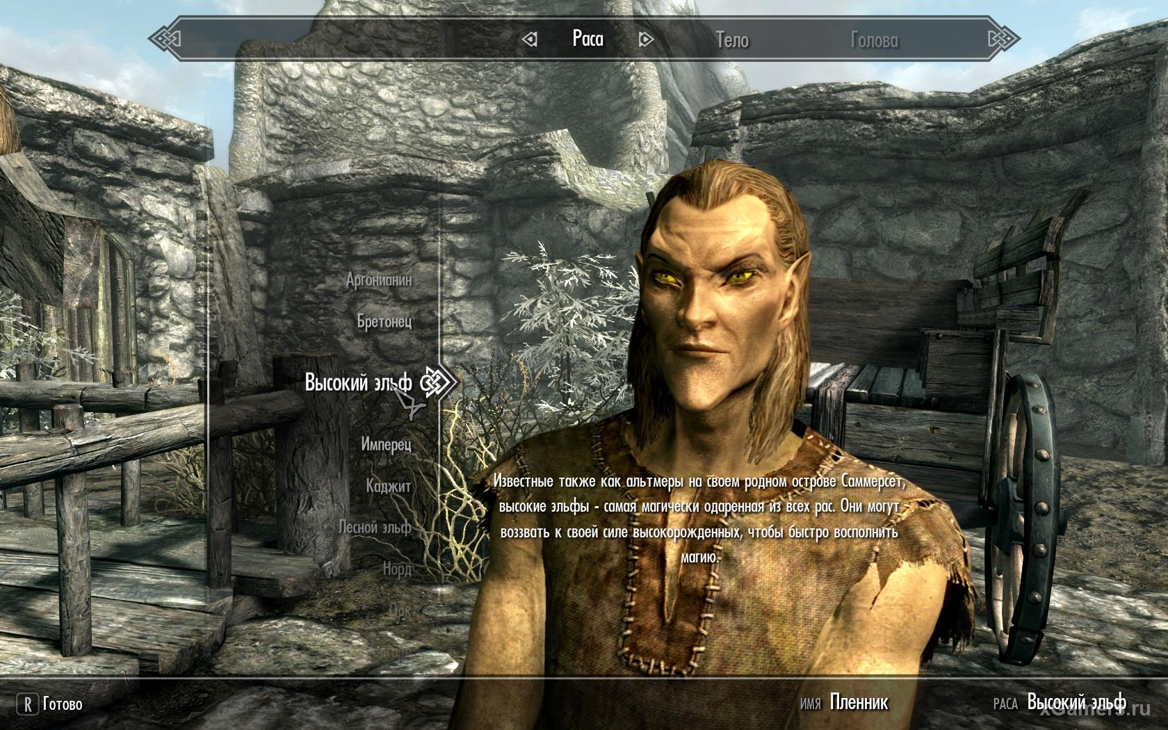 Race - High Elves in the game Skyrim
