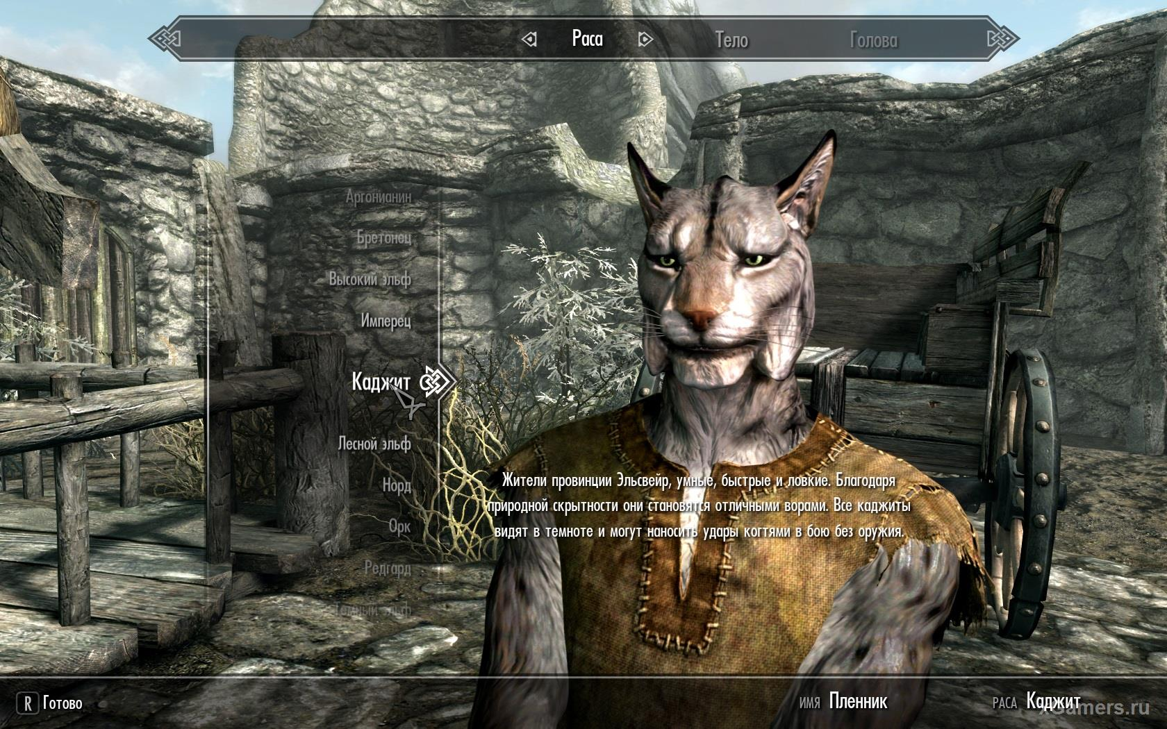 Race - Khajiit in Skyrim. Clever, mobile and fast crooks