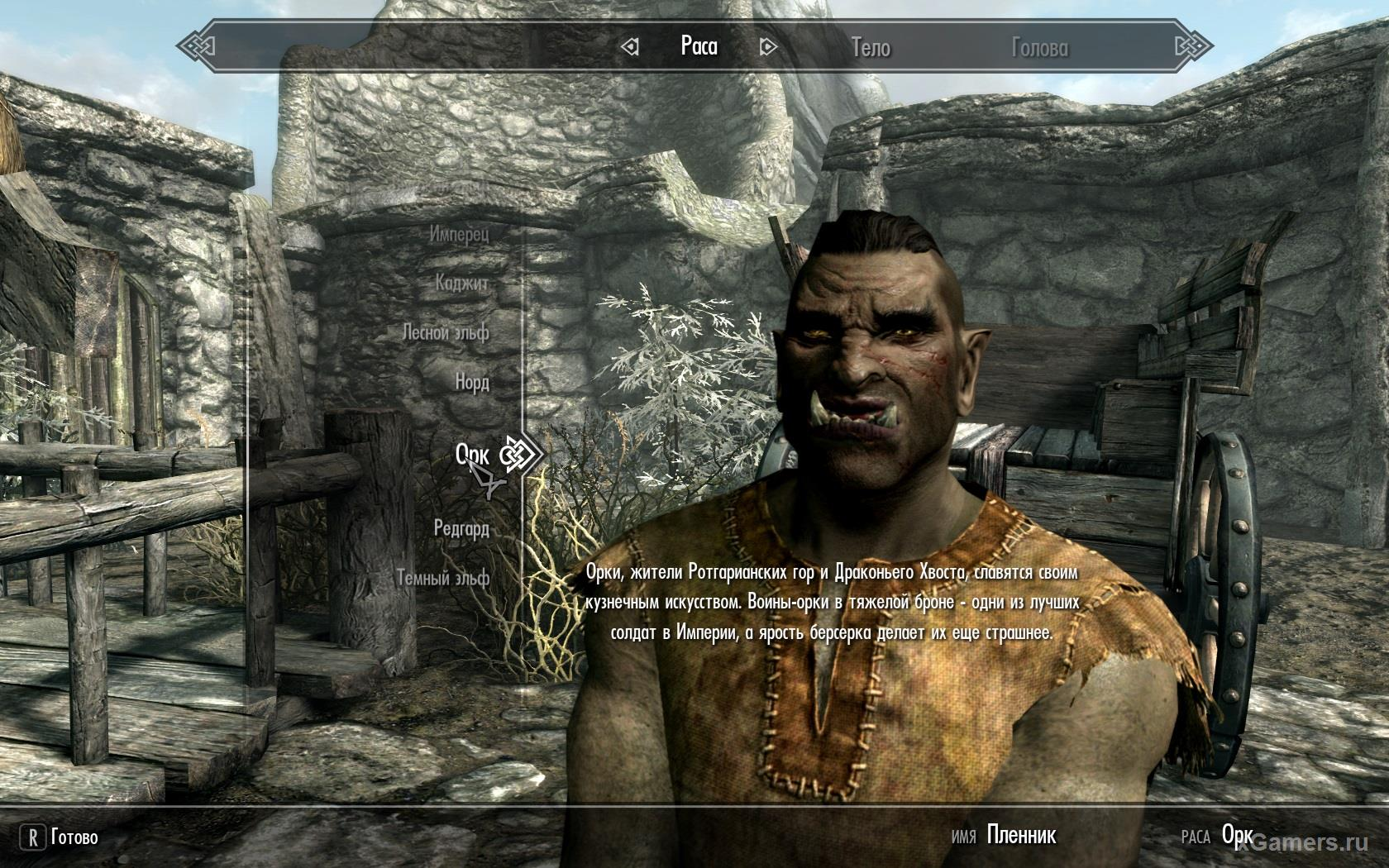 Race - Orcs in the game Skyrim