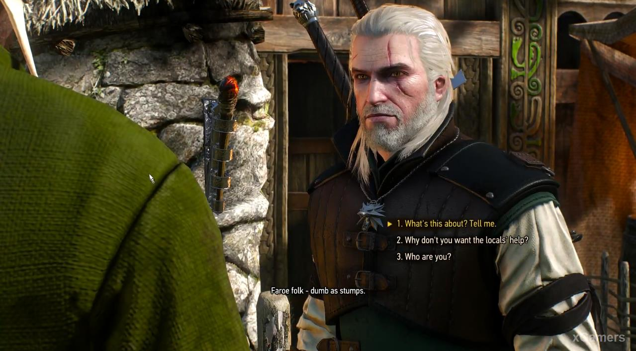 Left alone with the victim, Geralt, trying to find out the details of the attack