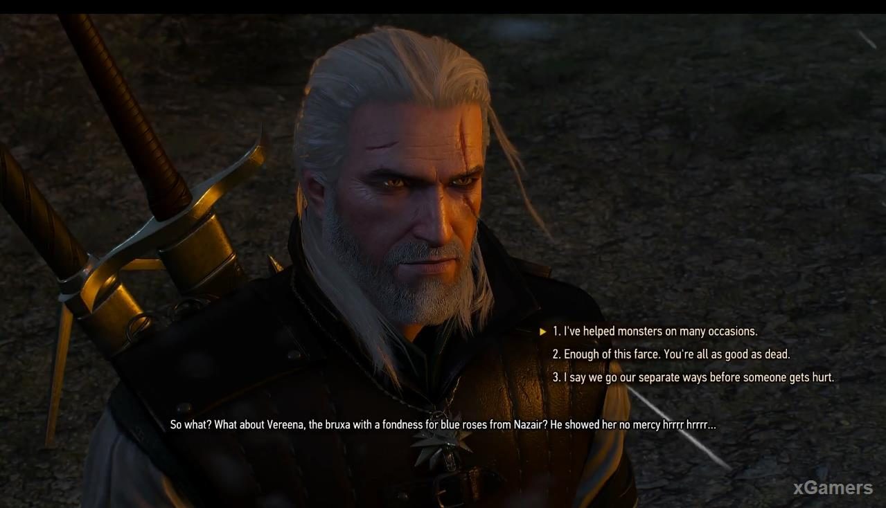 The Witcher 3: Skellige s Most Wanted
