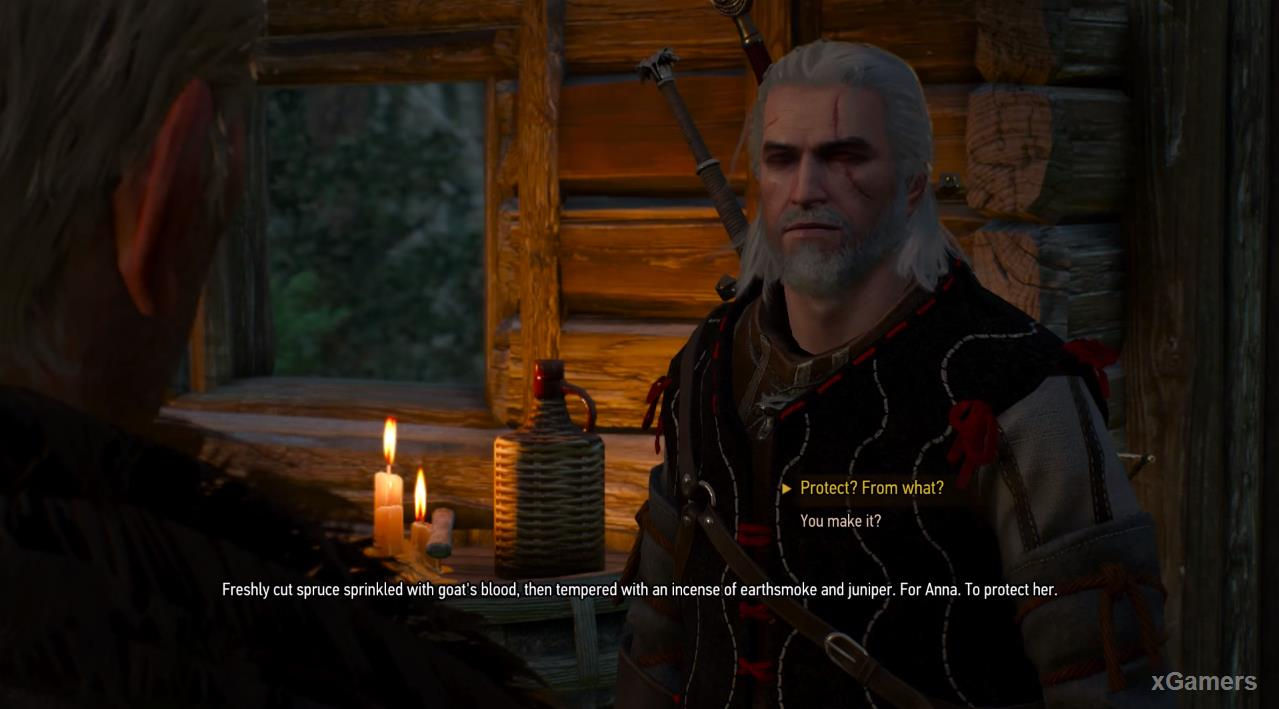 In house of the sorcerer, are waiting witcher