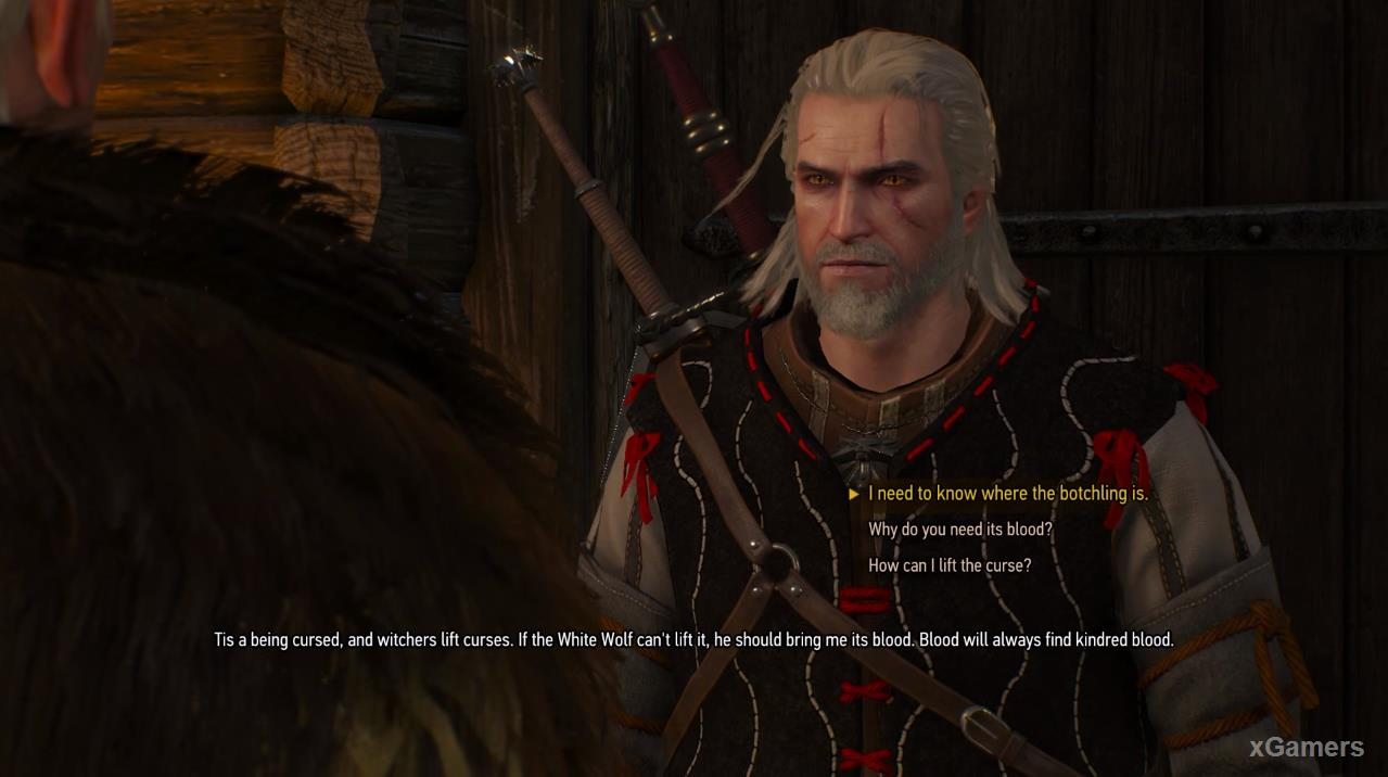 "Geralt in additional task ""A Princess in Distress"""