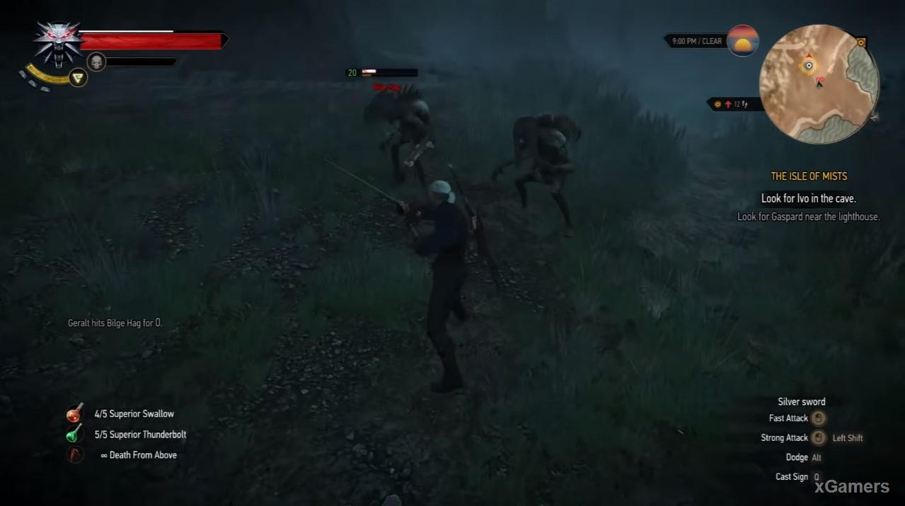 Geralt fight with Harpy and Swamp
