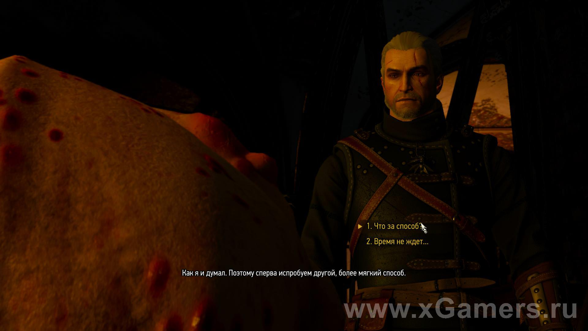 Quest: No Place Like Home - in The Witcher 3