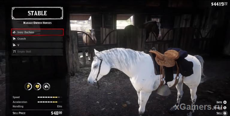 White wild horse is a great friend in search of the adventures of RDR 2