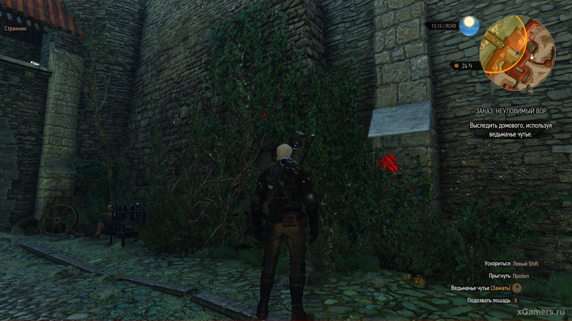 Walkthrough: An Elusive Thief - Witcher 3